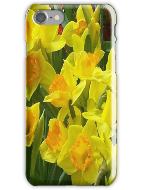 iPhone Case - Daffodils by Eileen Brymer