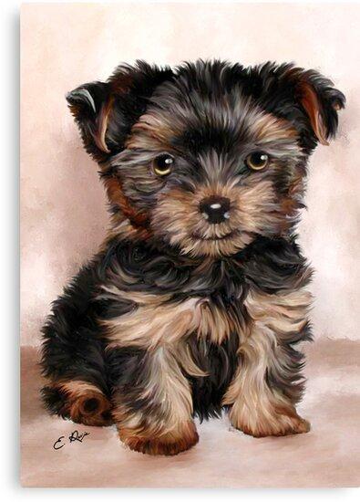Yorkshire Terrier Puppy by ellenspaintings
