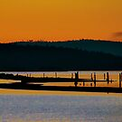 Sidney Spit Sunset by Lisa Baumeler