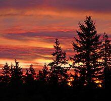Seattle Sunrise by Robin Nellist
