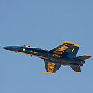 Blue Angel #1 by Buckwhite
