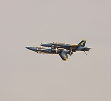 Blue Angels - Fortus Formation by Buckwhite