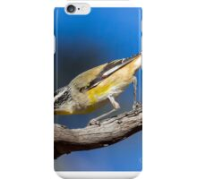 Striated Pardalote iPhone Case/Skin