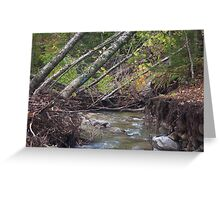 Trails of Irene Greeting Card