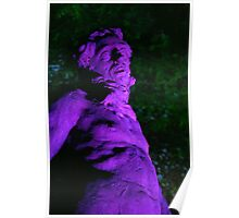 Night light, treasurers house statue Poster