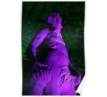 Night light, Treasurers house statue Poster