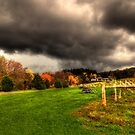 A Storm is Brewing.. by Yelena Rozov