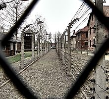 Fenced in by Wintermute69