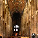 ely cathederal nave by Ilapin