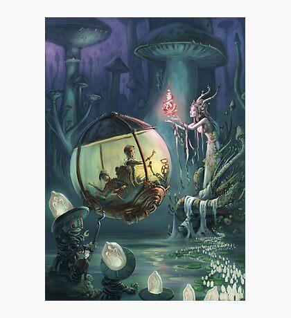 The Mushroom Fairy Photographic Print