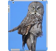 Totem of the great grey iPad Case/Skin