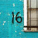16 - remembering 16 -  by Lynne Prestebak