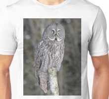 Statue of natural freedom Unisex T-Shirt