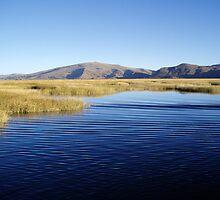 Perfect Reeds - Lake Titicaca, Bolivia by joegardner