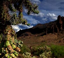 Arizona Desert at Superstition Mountain by DHParsons