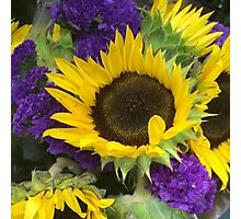 Purple and Yellow Bouquet Photographic Print