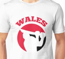 cricket player batsman batting Wales Unisex T-Shirt