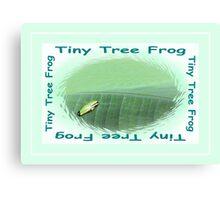 Tiny Tree Frog Canvas Print