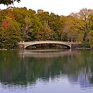 Bow Bridge by Rick Louie