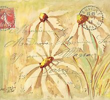 Daisies in Spring Postcard 2 by Maree Clarkson