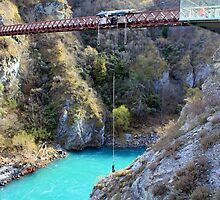 Bungy Jumping by Martin  Brinsley