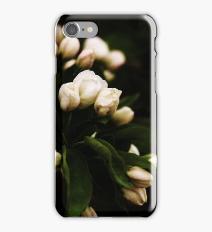 Apple Buds iPhone Case/Skin