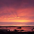 Taroona sunrise panorama by Odille Esmonde-Morgan