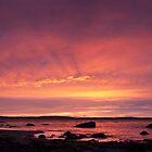 Taroona sunrise panorama by Odille Esmonde-Morgan