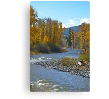 Autumn forest and river scene Canvas Print