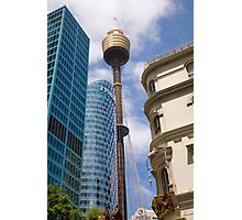 sydney and the sydney tower Photographic Print