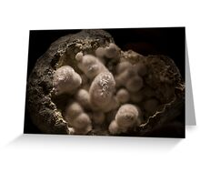 Beautiful light in the Zeolite Greeting Card