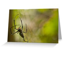 Orb Spider Greeting Card