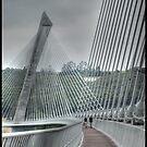 TheTerenez bridge by jean-jean