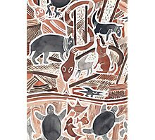Rêveries Austral(ienn)es n°1 Photographic Print