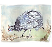 Listen to the Guinea Fowl Poster