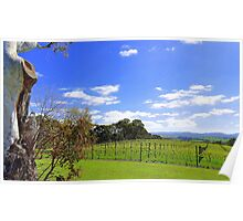 Hills above Hahndorf, South Australia Poster