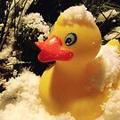 Duckie in the snow by waxyfrog