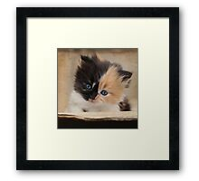 Watch out, world, here I come! Framed Print