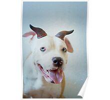 Smilin Devil Poster