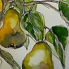 Pears. Detail.  by Elizabeth Moore Golding