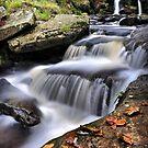 Autumn Flow 2 by Gareth Jones