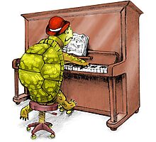 Piano Playing Turtle Art Photographic Print