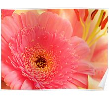 Gerbera and Lilies in a  Bouquet Poster