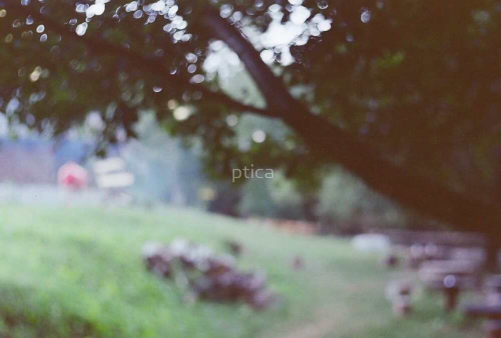 my moment of silence by ptica