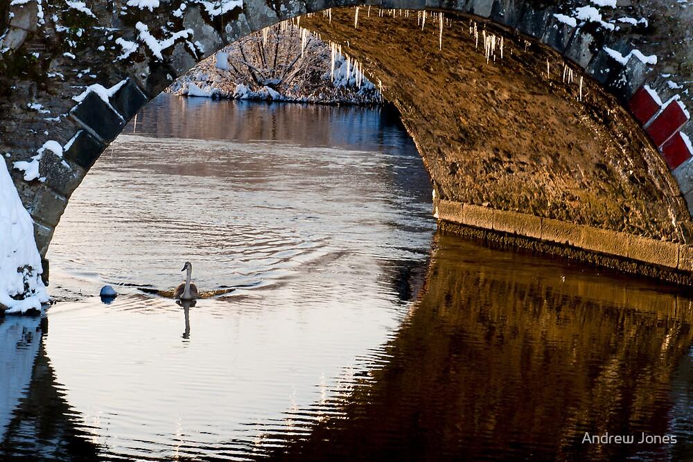 A winter scene, Graiguenamanagh, County Kilkenny, Ireland by Andrew Jones