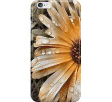 Raindrop Calendula iPhone Case/Skin