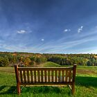 The Lonely Bench - FALL by Sergey Kalashnik