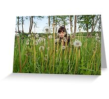 Beauty girl in meadow. Greeting Card