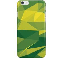 Green Geometrics iPhone Case/Skin