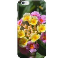 Lantana Violet iPhone Case/Skin